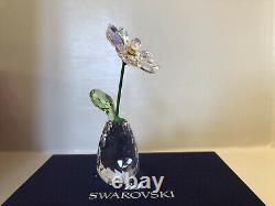 Authentic New In Box Swarovski Flower Dreams Daisy Ab Cristal 5529233 Pwp 2020