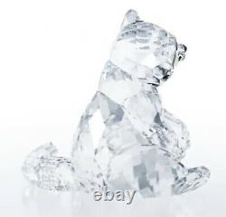 Nouveauté En Boîte 100% Authentique Swarovski Raccoon Cristal Figurine #5301563